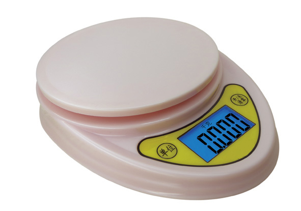Cheapest kitchen scale with backlight LCD