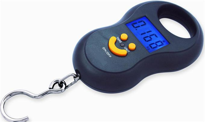 Cheap luggage scale fishing scale hanging scale